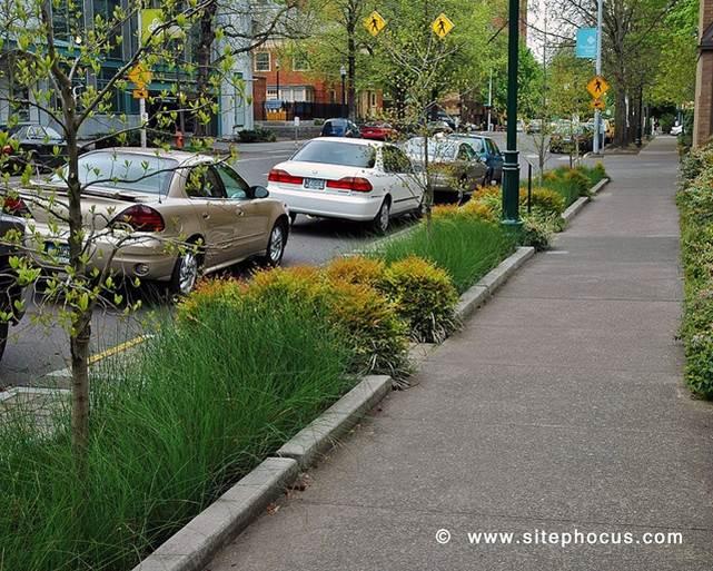 Bioswale Sidewalk