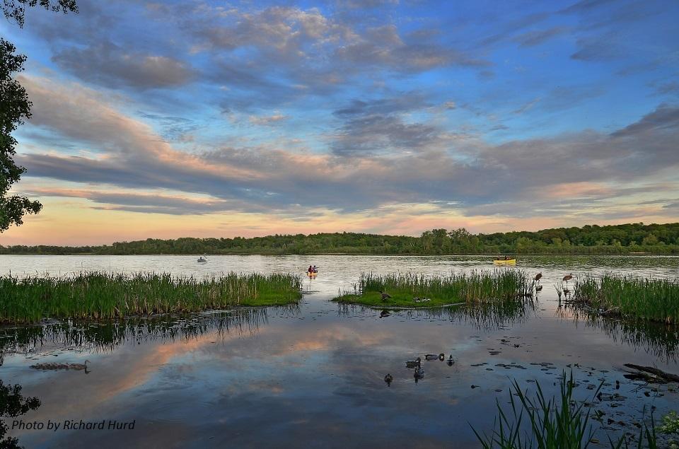 Lake Wingra Spring - Ducks&Kayaks - RH
